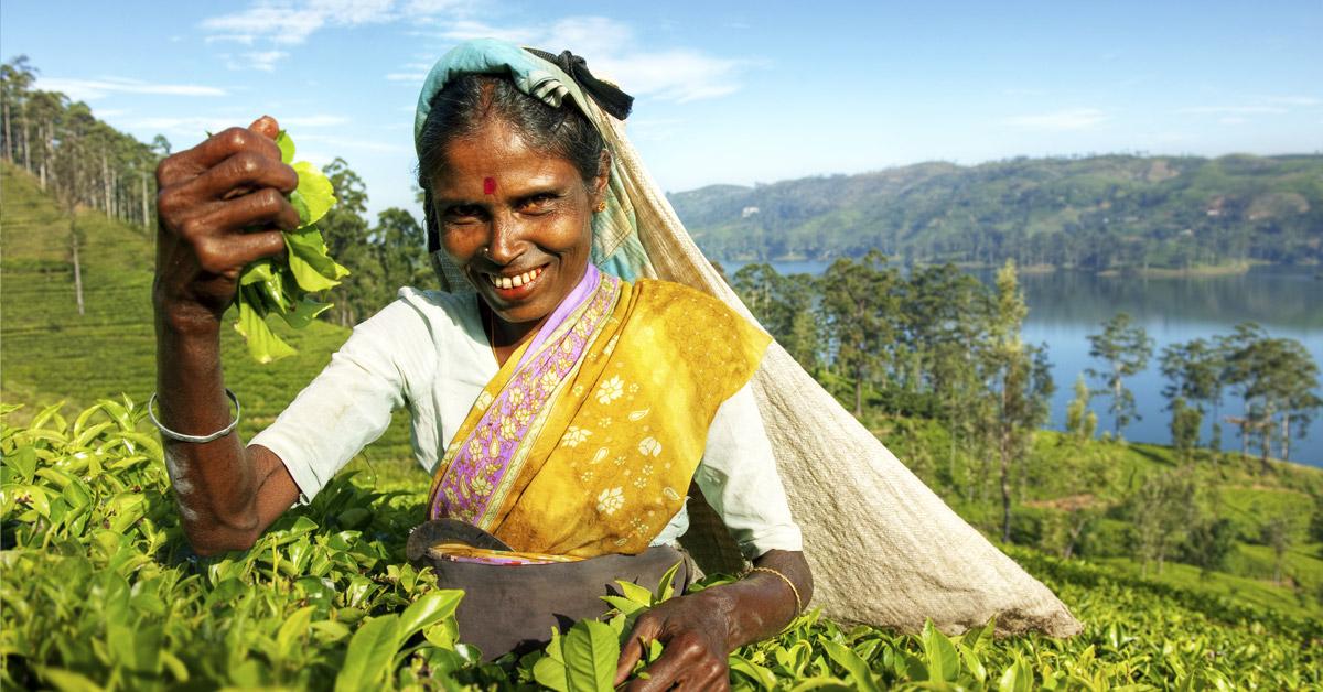 6 dôvodov prečo dovolenkovať na Srí Lanke