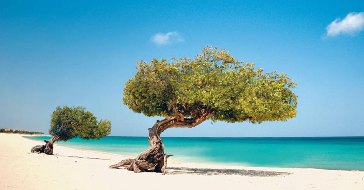 Dovolenka Aruba